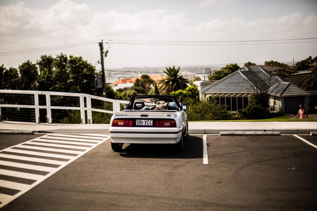 Rental Car Horror Story - Analogous to ... Everything!
